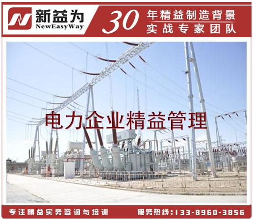 电力企业精益管理